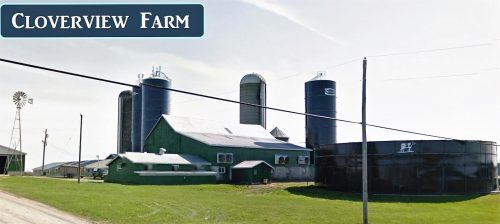 cloverview-farm